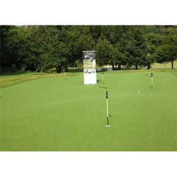 Premium Putting Grass